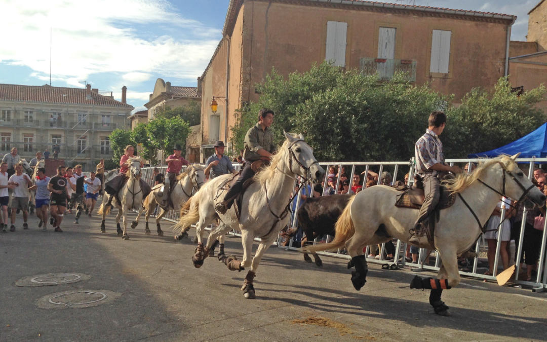 Spring holidays and events in the south of France
