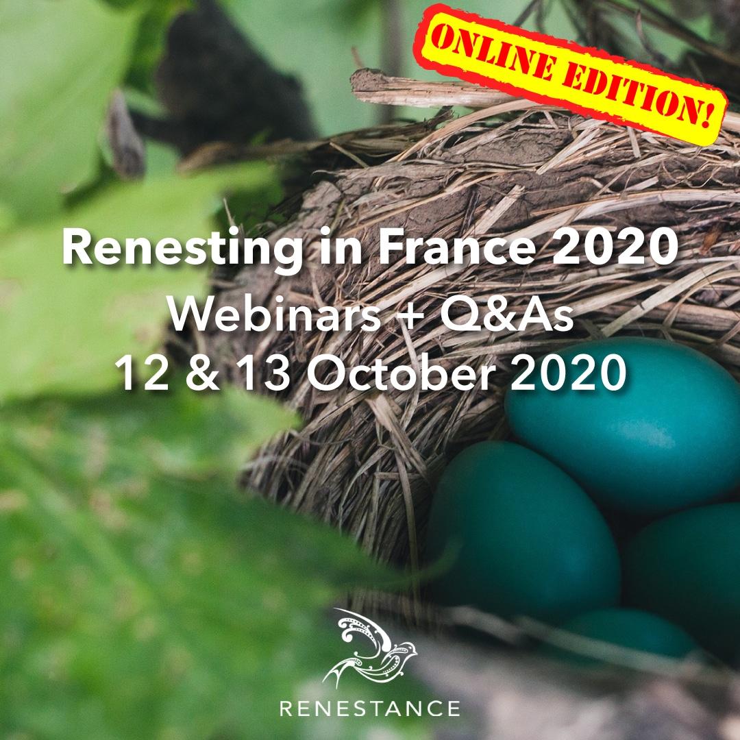 Renestance Seminar 2020 Online Edition